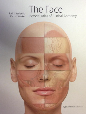The Face Pictorial Atlas Of Clinical Anatomy Pocket Dentistry