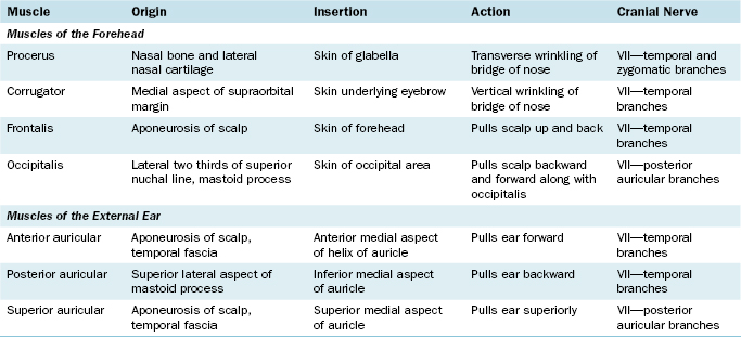 Suboccipital nerve  an overview  ScienceDirect Topics
