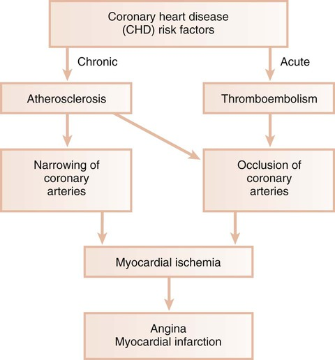 acute myocardial infarction and periodontal diseases The relationship between periodontal disease and systemic health  clinical  symptoms include unstable angina pectoris and acute mi as a.