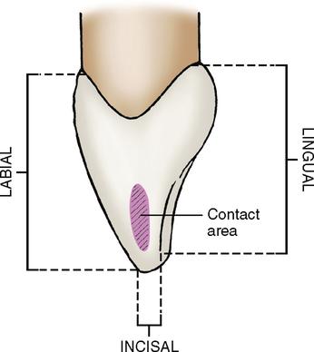 12: Incisors | Pocket Dentistry