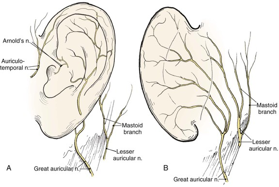 22 Reconstruction Of The Auricle Pocket Dentistry