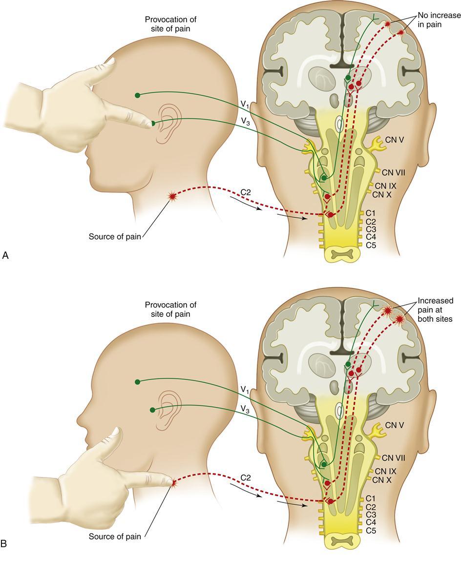 10. Diagnosis of Temporomandibular Disorders | Pocket Dentistry