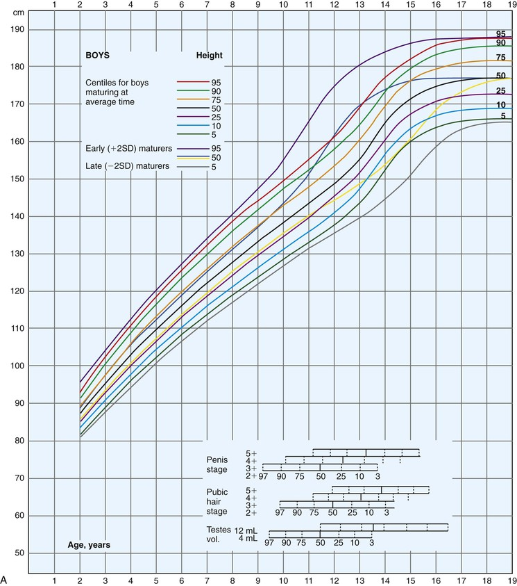 Male Growth Chart
