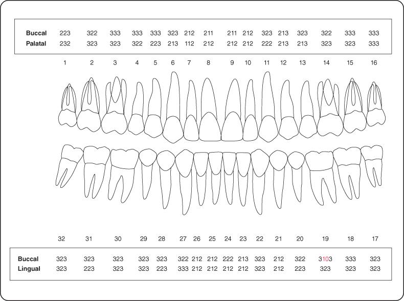 6 Interdisciplinary Treatment | Pocket Dentistry