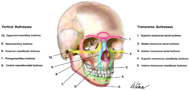 Maxillofacial injuries
