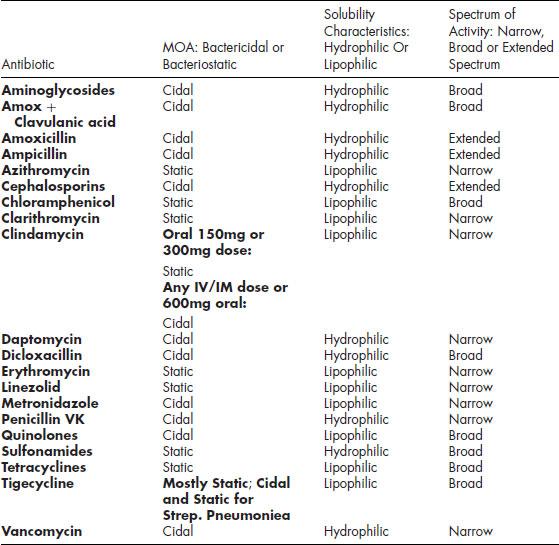 Half life of iv azithromycin dosing